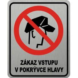 Piktogram ZÁKAZ VSTUPU V...