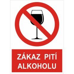 Cedule ZÁKAZ PITÍ ALKOHOLU 2