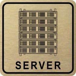 Piktogram SERVER 1 ZL